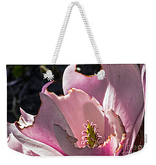 Weekender Tote Bag featuring the photograph Ragged Magnolia by Kate Brown