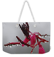 Weekender Tote Bag featuring the photograph Rain Weaver by Jani Freimann