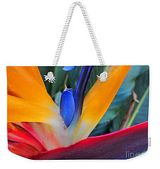 Rainbow Bright Weekender Tote Bag