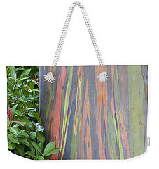 Weekender Tote Bag featuring the photograph Rainbow Eucalyptus by Bryan Keil