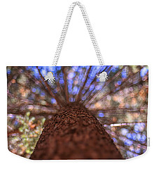 Weekender Tote Bag featuring the photograph Rainbow Pine by Aaron Aldrich