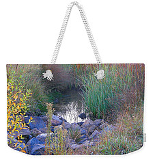 Rainbow Pond Weekender Tote Bag