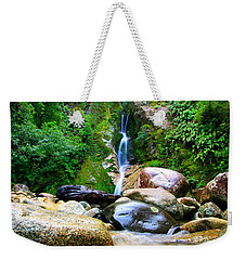 Weekender Tote Bag featuring the photograph Rainforest Stream New Zealand by Amanda Stadther