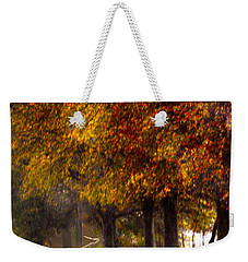 Weekender Tote Bag featuring the photograph Rainy Day Path by Lesa Fine