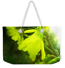 Rainy Dream Weekender Tote Bag by Nina Ficur Feenan