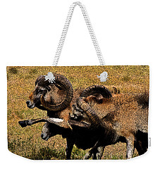 Weekender Tote Bag featuring the photograph Rams At Half-time by Doc Braham