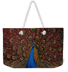 Weekender Tote Bag featuring the photograph Rare Pink Tail Peacock by Eti Reid