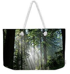 Rays In Redwoods Weekender Tote Bag