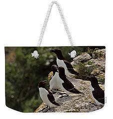 Razorbill Cliff Weekender Tote Bag by Dreamland Media