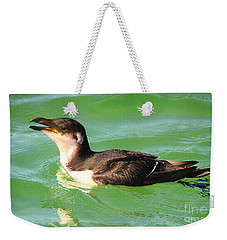 Razorbill In Florida Weekender Tote Bag