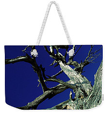 Reach For The Sky Weekender Tote Bag by Janice Westerberg