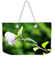 Weekender Tote Bag featuring the photograph Reaching For Nectar by Ecinja