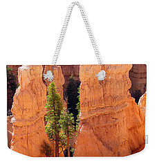 Reaching Towards The Sun Weekender Tote Bag