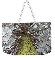 Weekender Tote Bag featuring the photograph Ready For Christmas by Felicia Tica
