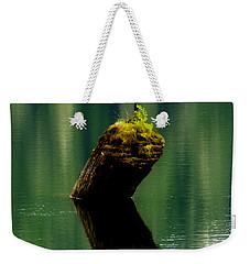 Rebirth  Weekender Tote Bag by Marilyn Wilson