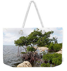 Weekender Tote Bag featuring the photograph Reclamation 9 by Amar Sheow