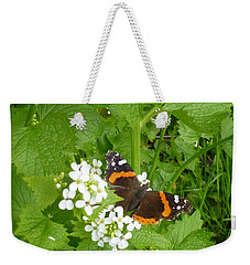 Weekender Tote Bag featuring the photograph Red Admiral Butterfly by Lingfai Leung
