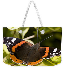 Red Admiral Butterfly Weekender Tote Bag by Richard Thomas
