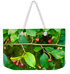 Red And Black Berries Weekender Tote Bag
