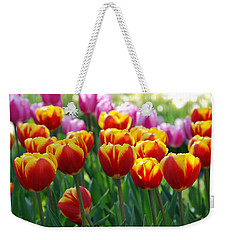 Weekender Tote Bag featuring the photograph Red And Yellow Tulips  by Allen Beatty