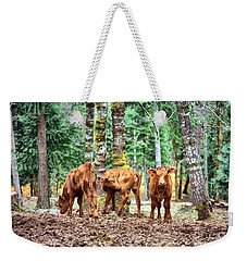 Red Angus Calves Weekender Tote Bag