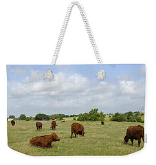 Weekender Tote Bag featuring the photograph Red Angus Cattle by Charles Beeler