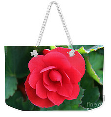 Weekender Tote Bag featuring the photograph Red Begonia by Sergey Lukashin