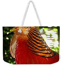 Red Bird Weekender Tote Bag by Pamela Walton