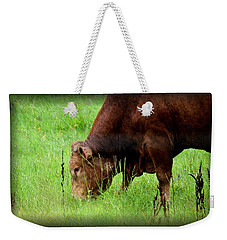 Red Brangus Bull Weekender Tote Bag