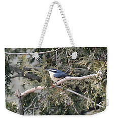 Weekender Tote Bag featuring the photograph Red Breasted Nuthatch by Brenda Brown