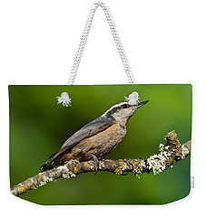 Red Breasted Nuthatch In A Tree Weekender Tote Bag