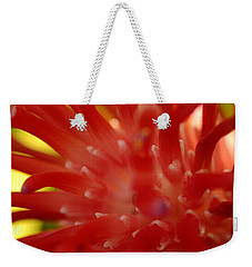 Weekender Tote Bag featuring the photograph Red Bromeliad by Greg Allore