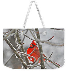 Red Cardinal Northern Bird Weekender Tote Bag