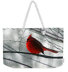Red Cardinal On Winter Branch  Weekender Tote Bag