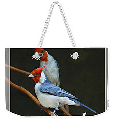 Red-crested Cardinal Weekender Tote Bag