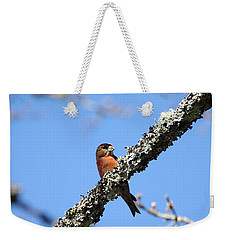 Red Crossbill Finch Weekender Tote Bag by Marilyn Wilson