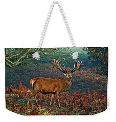 Red Deer Stag In Woodland Weekender Tote Bag