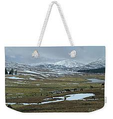 Red Deer Stags In A Highland Glen Weekender Tote Bag by Phil Banks