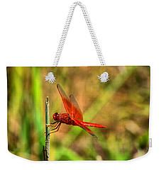 Red Dragon Dreams Weekender Tote Bag