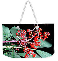 Weekender Tote Bag featuring the photograph Red Elderberry by Cheryl Hoyle