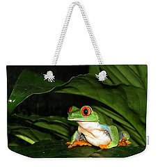 Red Eyed Green Tree Frog Weekender Tote Bag