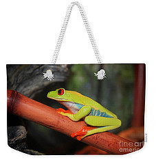 Red Eyed Tree Frog Weekender Tote Bag by Cathy  Beharriell