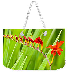 Red Flower Family Weekender Tote Bag by Dee Dee  Whittle