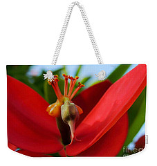 Weekender Tote Bag featuring the photograph Red Flower by Kristine Merc