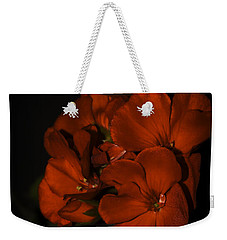 Weekender Tote Bag featuring the photograph Red Flowers In Evening Light by Lucinda Walter
