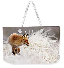 Red Fox And Hoar Frost _ The Catcher In The Rime Weekender Tote Bag by Roeselien Raimond