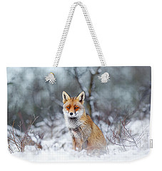 Red Fox Blue World Weekender Tote Bag by Roeselien Raimond