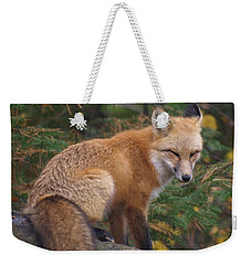 Weekender Tote Bag featuring the photograph Red Fox by James Peterson