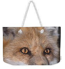 Weekender Tote Bag featuring the photograph Red Fox Portrait Wildlife Rescue by Dave Welling