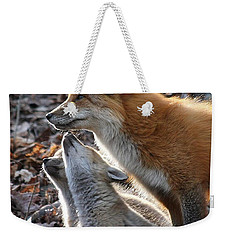Weekender Tote Bag featuring the photograph Red Fox With Kits by Doris Potter